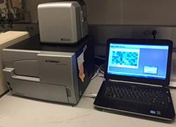 Belfer Bio Tek Synergy HTX Microplate Reader